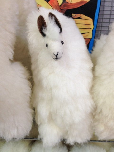 A stuffed llama on a shelf