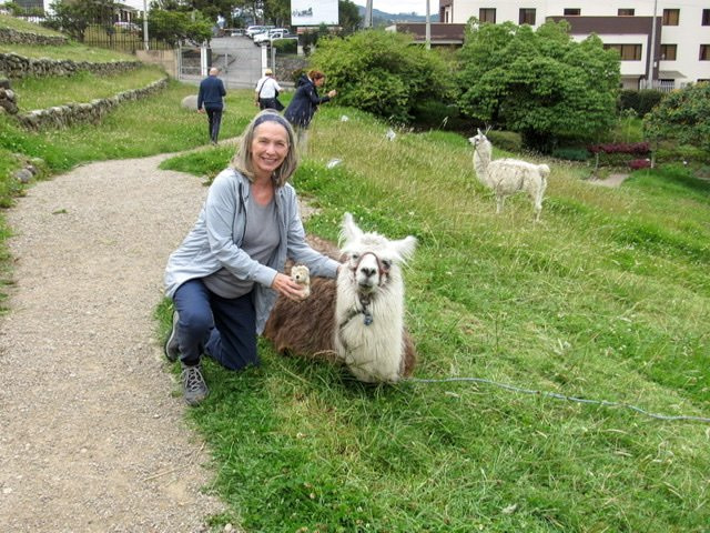 A woman kneeling next to a llama