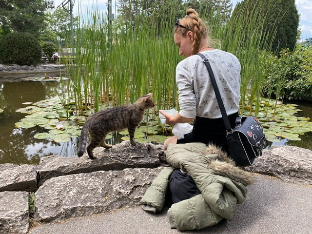 A woman sitting by a pond and sharing food with a cat