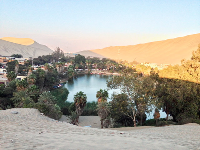 A small lake surrounded by palm trees and sand dunes