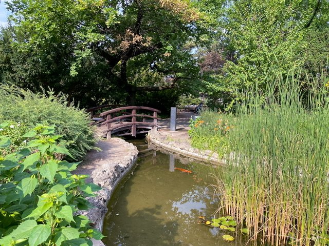 A bridge and a pond with one orange fish