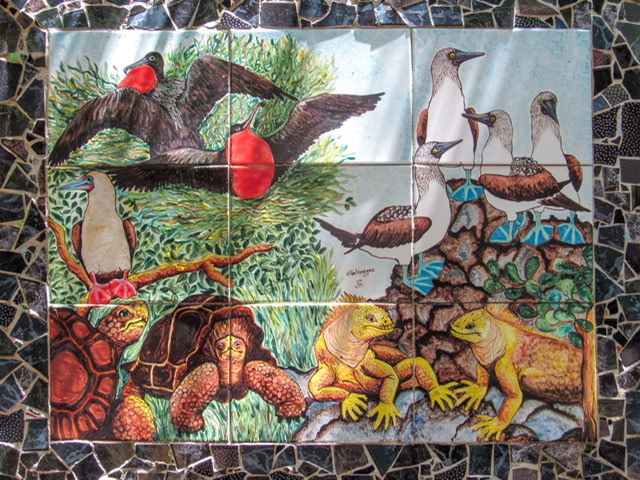 Tiles showing Galapagos wildlife