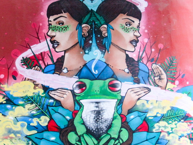 A mural with a mirror image of a dark-haired woman and one green tree frog