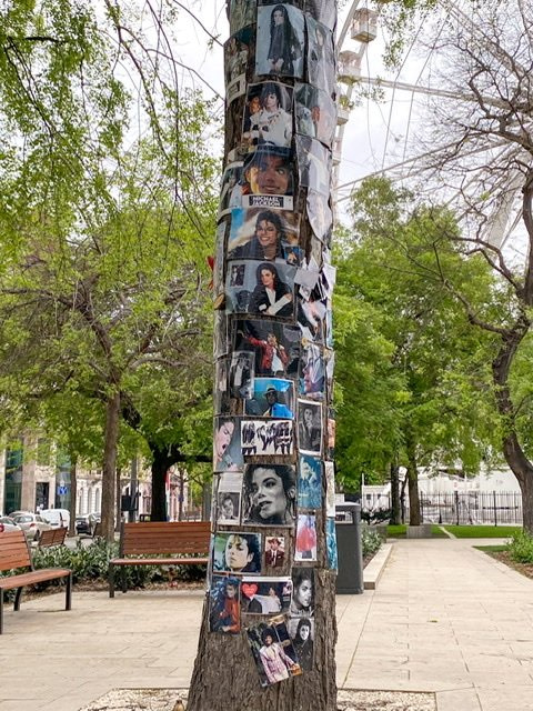 A tree covered with photos of Michael Jackson