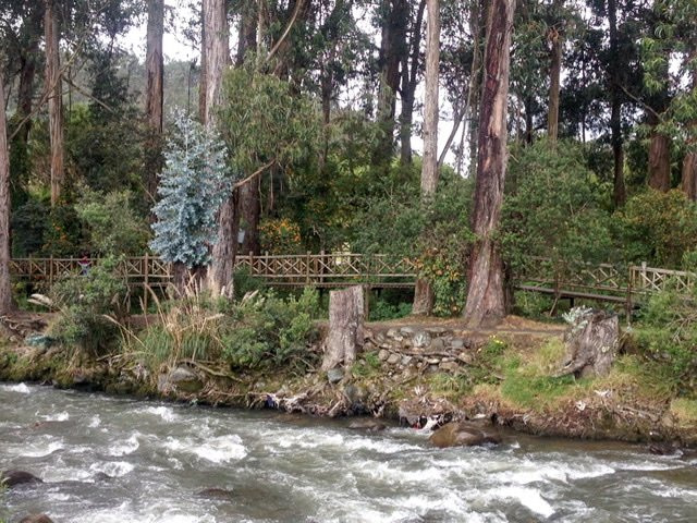 A fast-flowing river with a wooden walkway alongside it