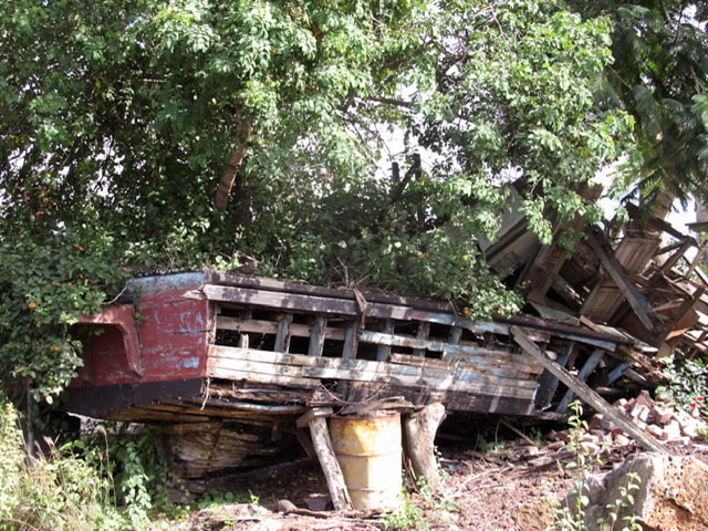 A dilapidated boat under trees