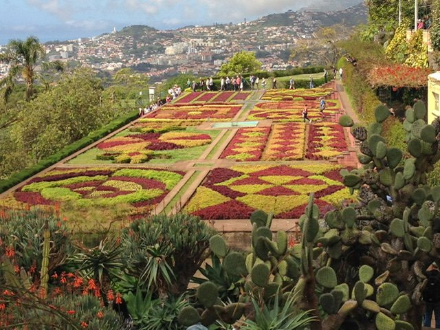 View of garden and mountains in Funchal